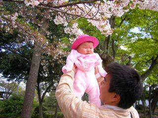 安城・秋葉公園の桜の下で(2006-04-16)