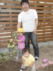 裏庭にヤマボウシを植樹(2009-06-20)